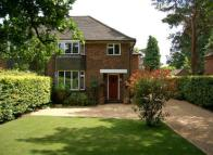 4 bed semi detached home to rent in Beaconsfield