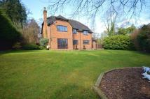 5 bed Detached house in Collinswood Road...