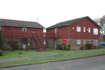 Wren Road Flat to rent