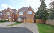 Detached property to rent in Nightingale Drive...