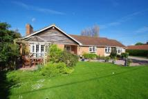 Detached Bungalow for sale in Burton Row, Brent Knoll,