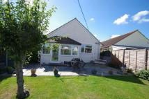 Detached Bungalow for sale in Donstan Road, Highbridge