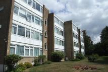 Flat to rent in 51 Albemarle Road...