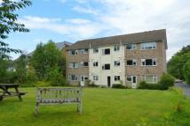 Flat to rent in 76 Albemarle Road...