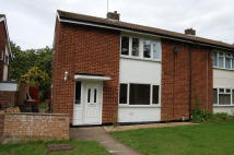 4 bedroom semi detached property to rent in The Dell, Stevenage, SG1