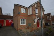 semi detached house to rent in Serpentine Close...