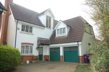 Detached property to rent in Cleveland Way, Stevenage...