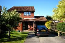 Detached property to rent in Wayside Close, Frome...