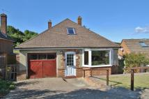 3 bedroom Detached Bungalow for sale in Plymouth Avenue