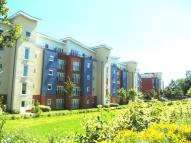 1 bedroom Apartment in Alexander Square...