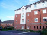 Causton Gardens Apartment to rent