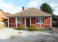 Detached Bungalow in BOTLEY ROAD, Horton...