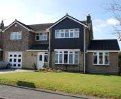 Detached home to rent in 26 Beechfields...