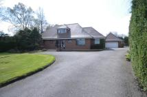 Detached property in Scillon House...