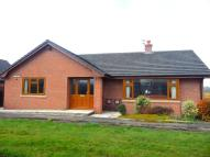 2 bed Detached Bungalow in 5 Little Firs Fold...