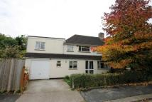 5 bedroom semi detached property in Ronald Road, Stapleton