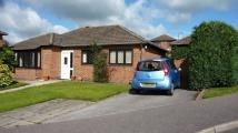 Detached Bungalow for sale in 1 Copley Croft...