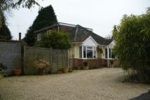 Detached Bungalow for sale in Crowthorne