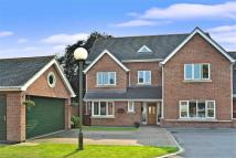 5 bed Detached house in Barwell