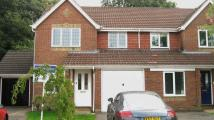 semi detached home to rent in MAIDENBOWER