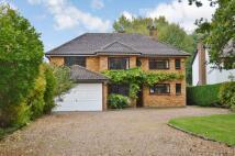 5 bedroom Detached home in Lambton, Weston Road...