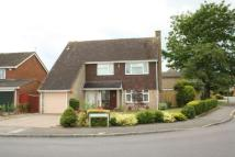 4 bed Detached home in Squirrels Way, Earley