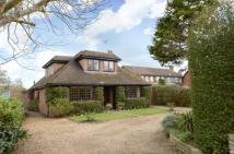 Detached Bungalow for sale in Elm Lane, Earley