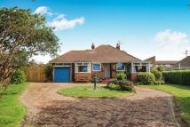 4 bedroom Bungalow in Firle Road, Peacehaven...