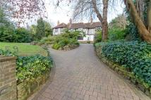 4 bed Detached house for sale in Tongdean Avenue, Hove...