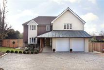 5 bedroom Detached home for sale in Elm Close, Hove...