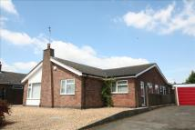 Detached Bungalow for sale in Rutland Way, Ryhall...