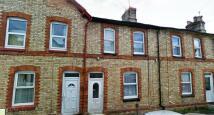 ALBERT TERRACE Terraced house to rent