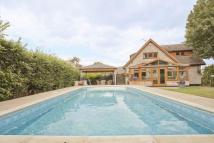 Detached property for sale in Tye Lodge, The Tye...