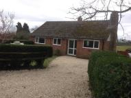 3 bed Detached Bungalow in Ringwood Road, Alderholt...