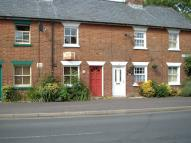 Shaftesbury Street Cottage to rent