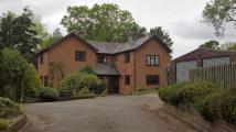 4 bed property to rent in Blissford, Fordingbridge...