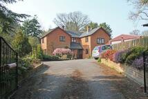 4 bedroom home in Blissford, Fordingbridge...