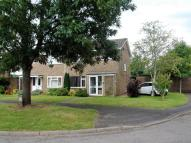 property to rent in Ash Grove, Ringwood...