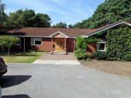 Bungalow to rent in Barnsfield Road...