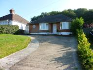 Detached Bungalow in Canterbury Road, Lydden...
