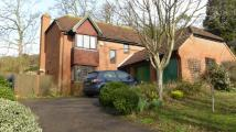 4 bed Detached house to rent in Monastery Avenue, Dover...