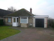 Detached Bungalow to rent in Sandwich Road, Whitfield...