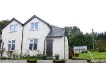 Cottage to rent in Cox Hill, Shepherdswell...