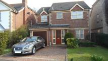 4 bed Detached house in MUDEFORD