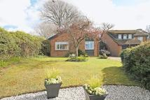 Detached Bungalow for sale in BRANSGORE
