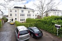1 bedroom Flat to rent in Grove Hill Gardens...