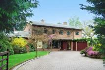 4 bed Detached house for sale in The Firs...