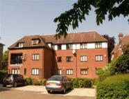 Buckhurst Flat to rent