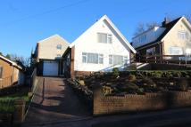 4 bedroom Detached Bungalow in Yewberry Close, Malpas...
