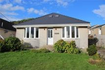 Detached Bungalow for sale in Steepholm, Main Road...